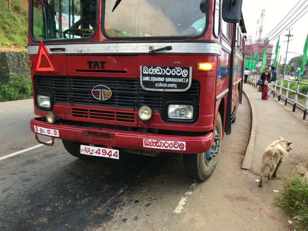 autobusy na Sri Lance, SRI LANKA Co warto wiedzieć przed podróżą?