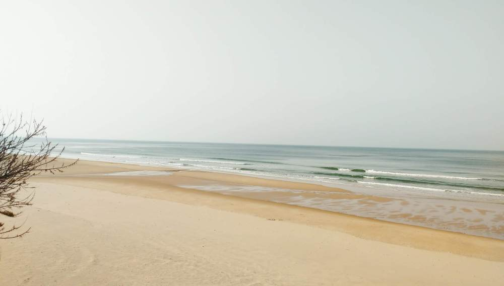 Surf Camp w Portugalii - nauka surfingu